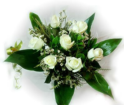 ורדים בלבן
